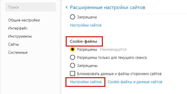 Cookie-файлы в Яндекс Браузере
