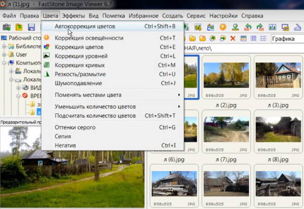 FastStone в Windows 10