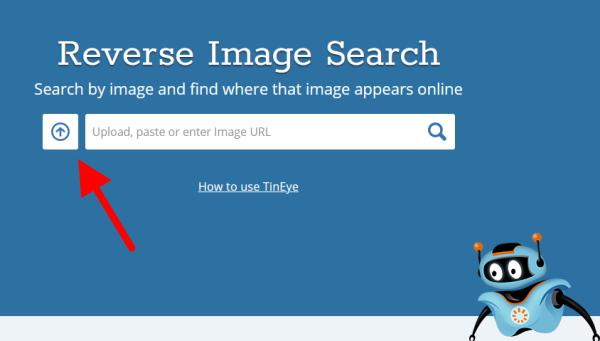 Tineye.com поиск двойников