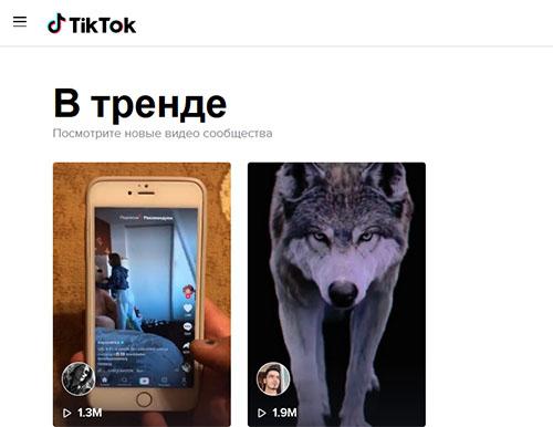 Официальный сайт Тик Ток