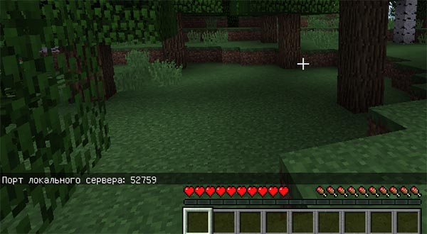 Порт для подключения в Minecraft