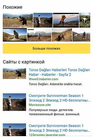 Поиск картинки по фото в Яндекс