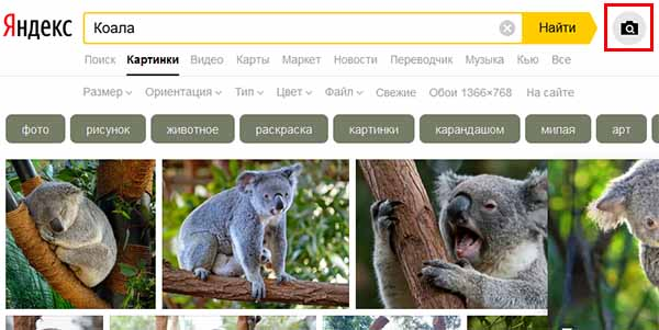 Кнопка поиска по картинке в Яндекс на компьютере