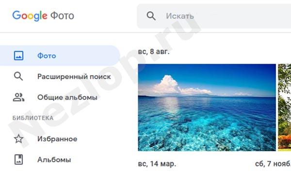 Гугл Фото на компьютере