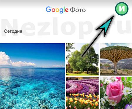 Кнопка профиля Гугл